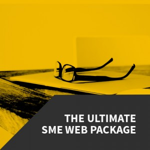 Virtual Wiz Web Design Package